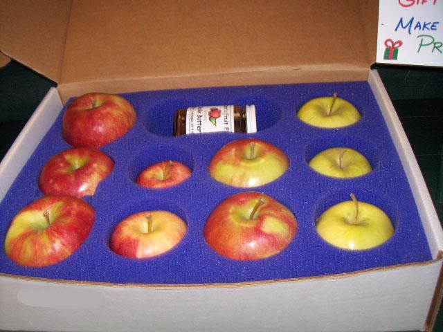 berry picking methode